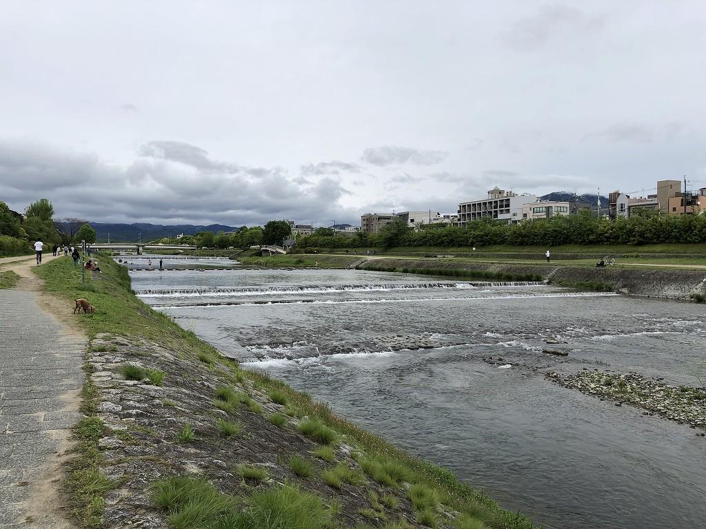 鴨川沿いを散歩1
