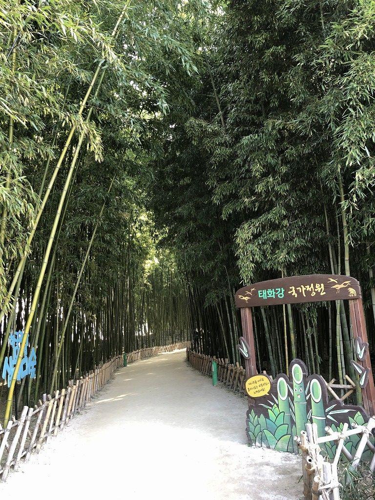 テファガン国立庭園の十里竹林2