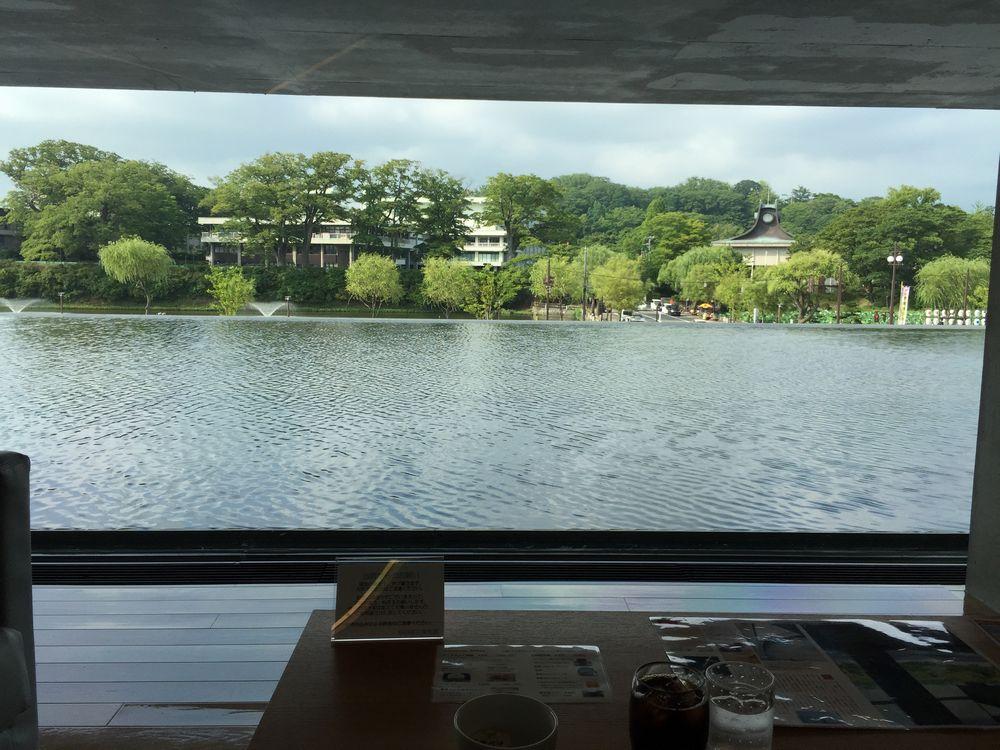 秋田県立美術館のカフェから見た水庭とお濠2