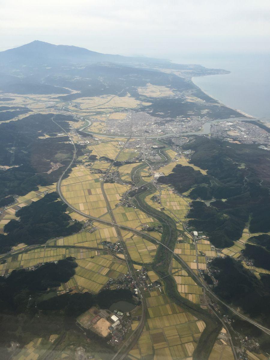 米の収穫前の秋田平野