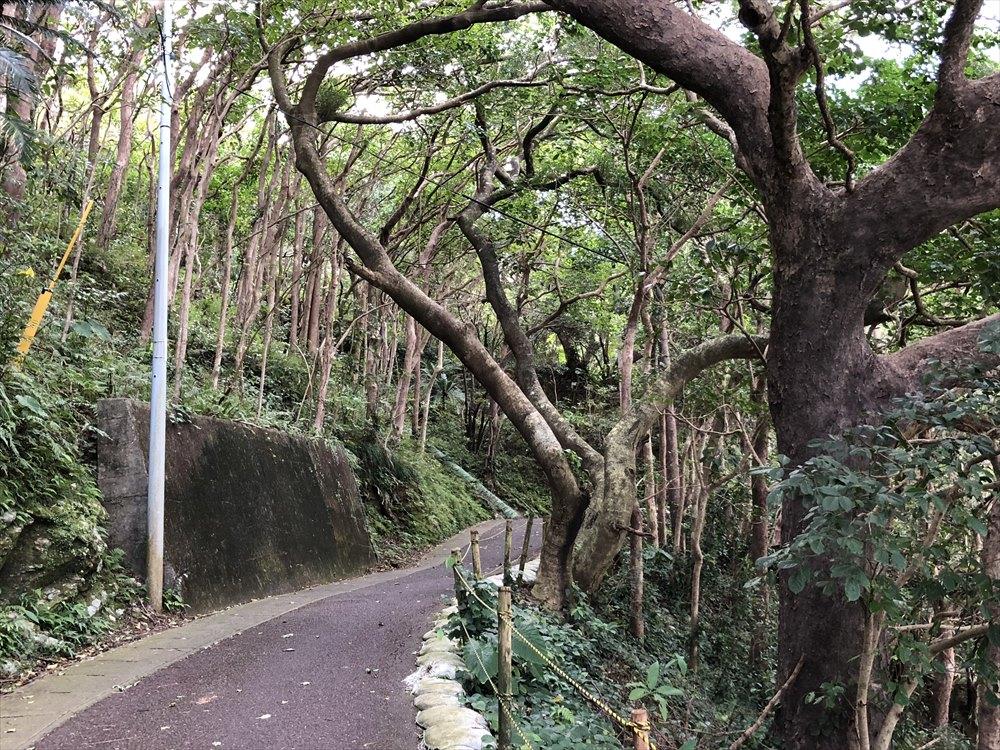 おがみ山公園の坂道1