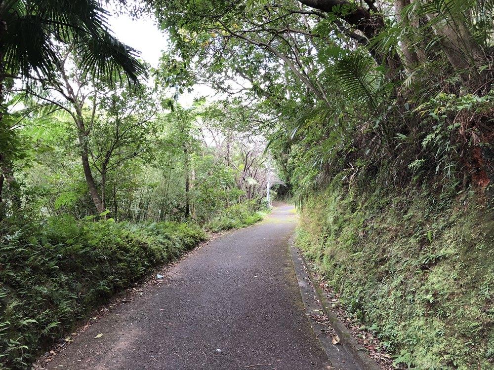 おがみ山公園の坂道2