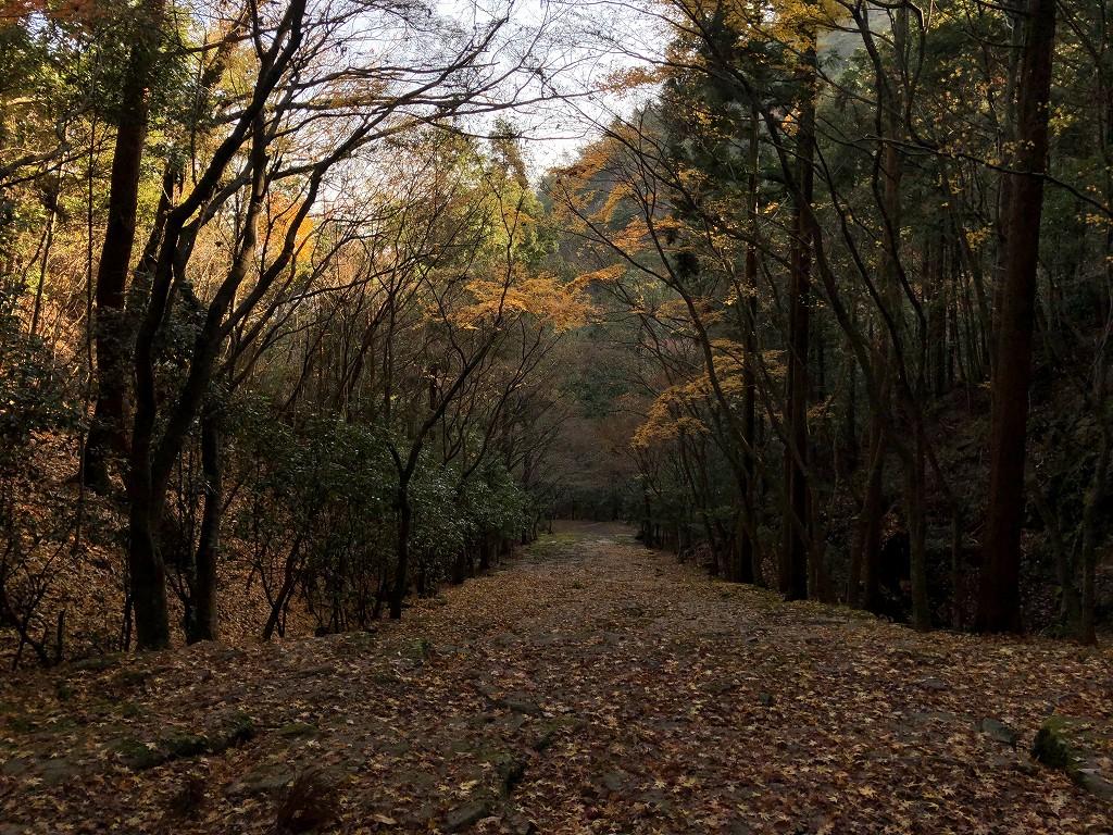 アマン京都の天ヶ峰への散策路9
