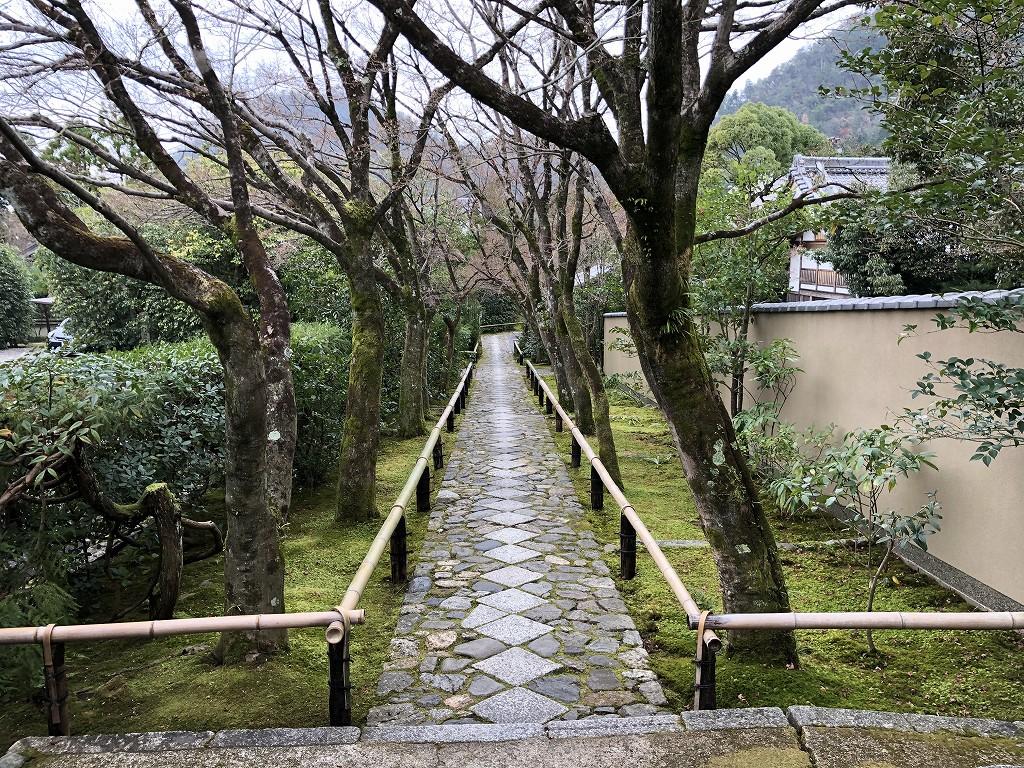光悦寺の参道2