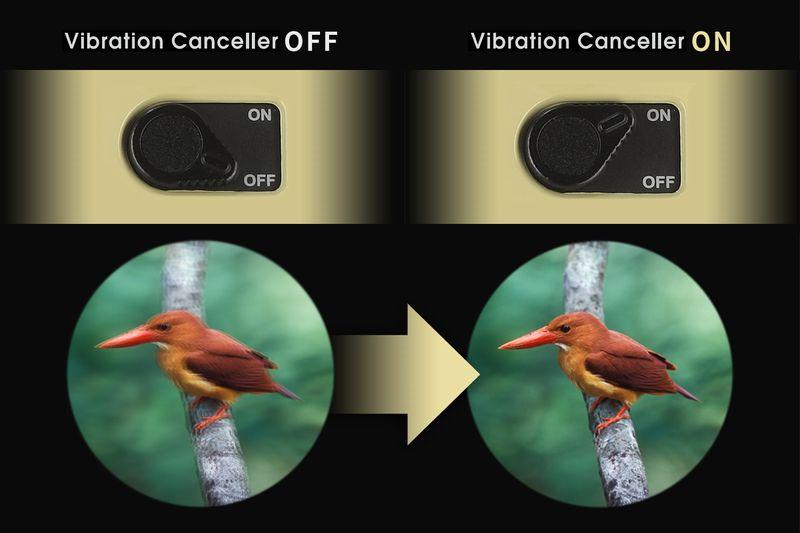 Vixenの防振双眼鏡のブレ補正効果