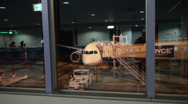 ボーイング787操縦室の窓画像