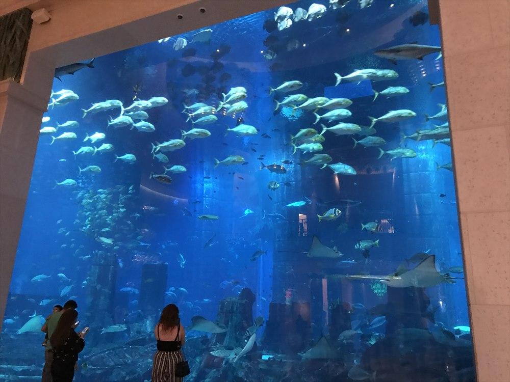 アトランティス・ザ・パームの巨大水族館