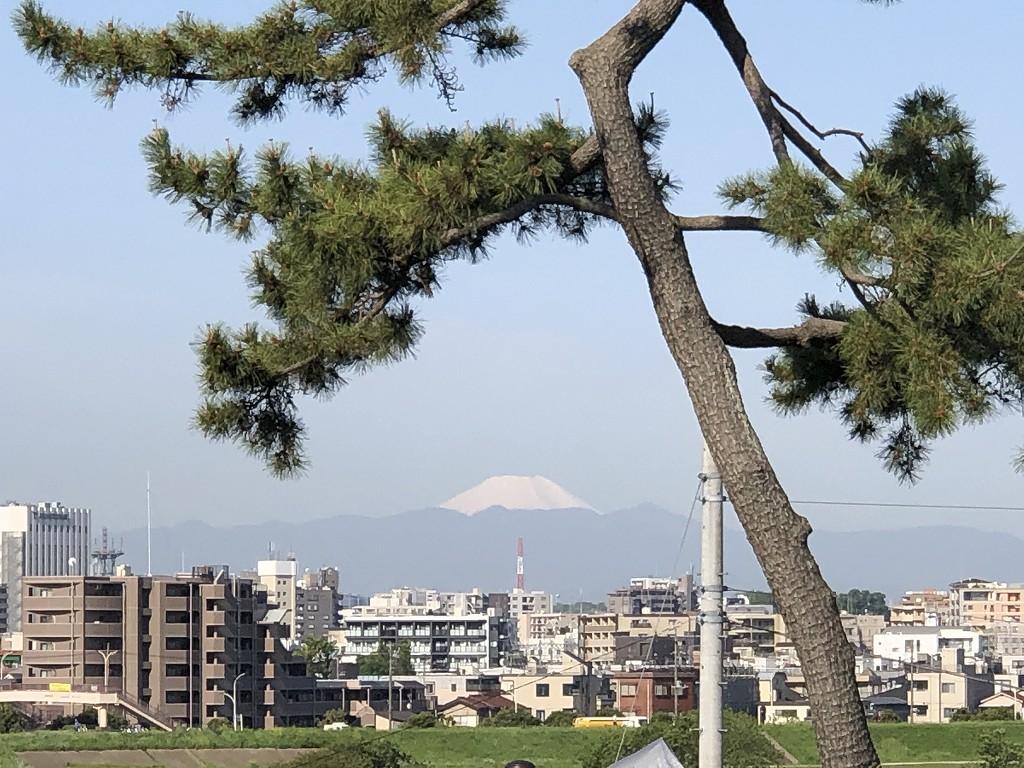 二子玉川公園から富士山