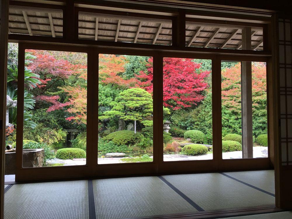 月照寺の庭の紅葉1