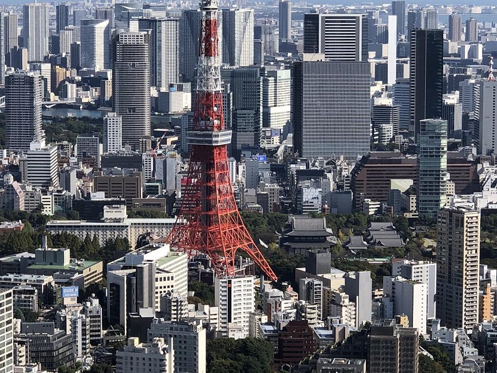 六本木ヒルズ展望台から東京タワーと増上寺