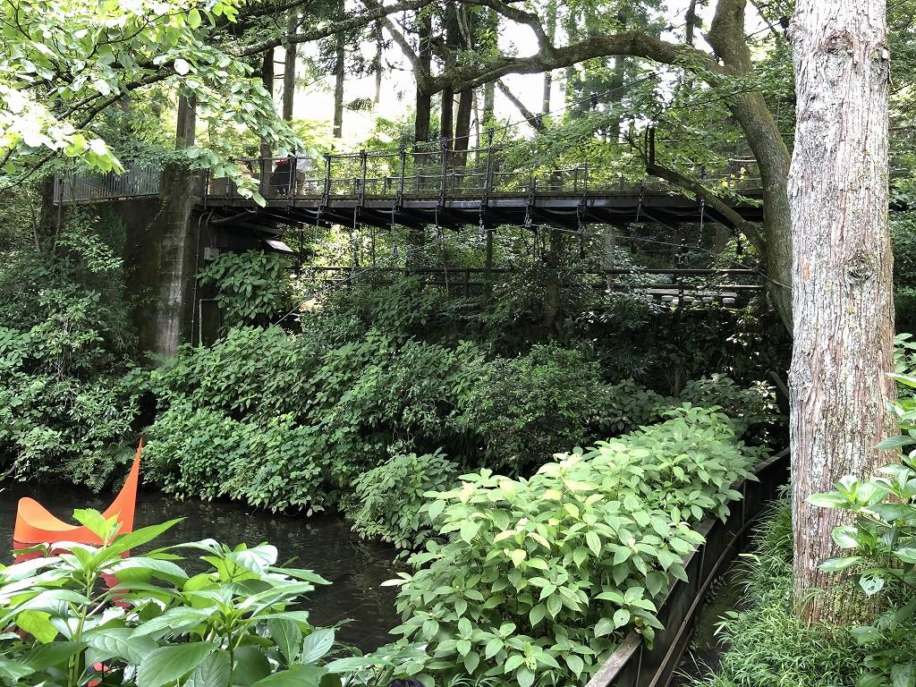 箱根彫刻の森美術館の高低差を活かした作り