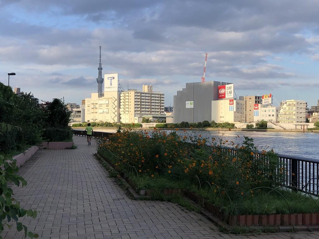 隅田川沿いに北上2