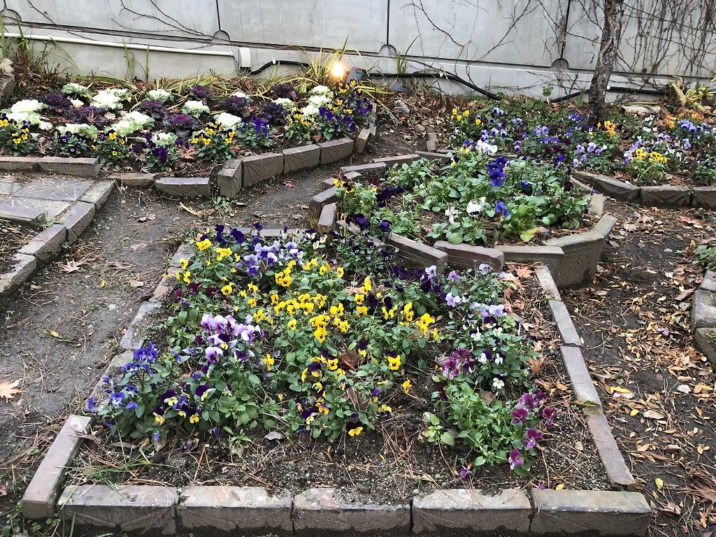 花巻の茶寮かだんの花壇3