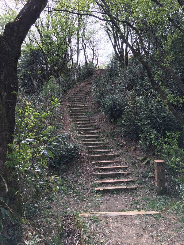 白鳥城址の急峻な坂道1