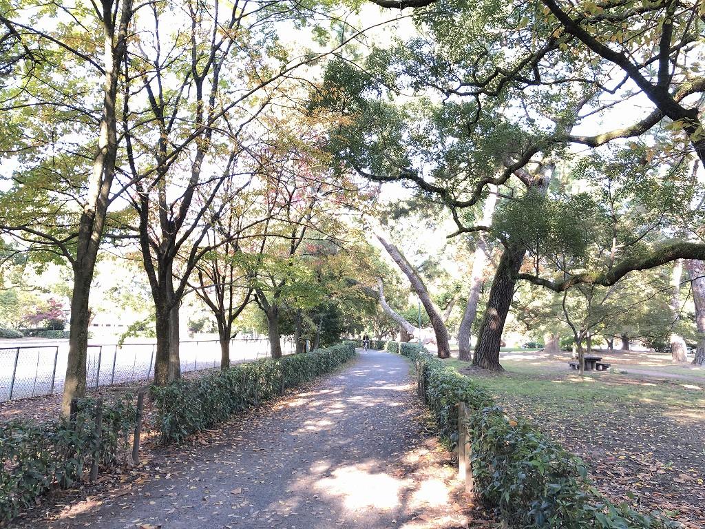 京都御苑の非・密な空間1