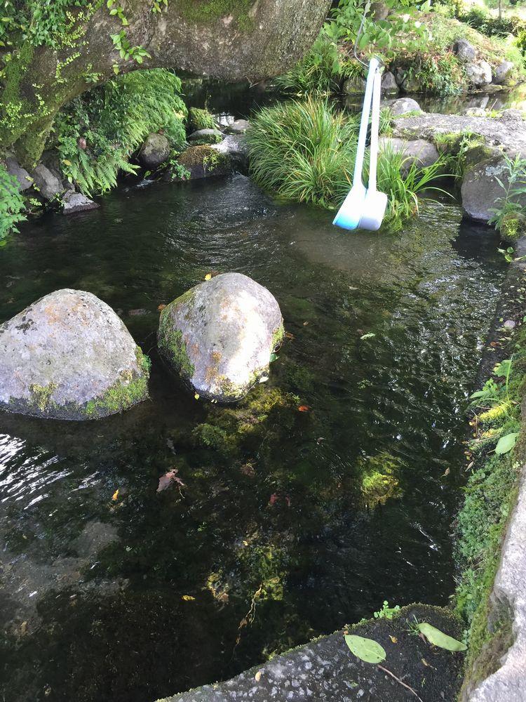 池の川水源画像