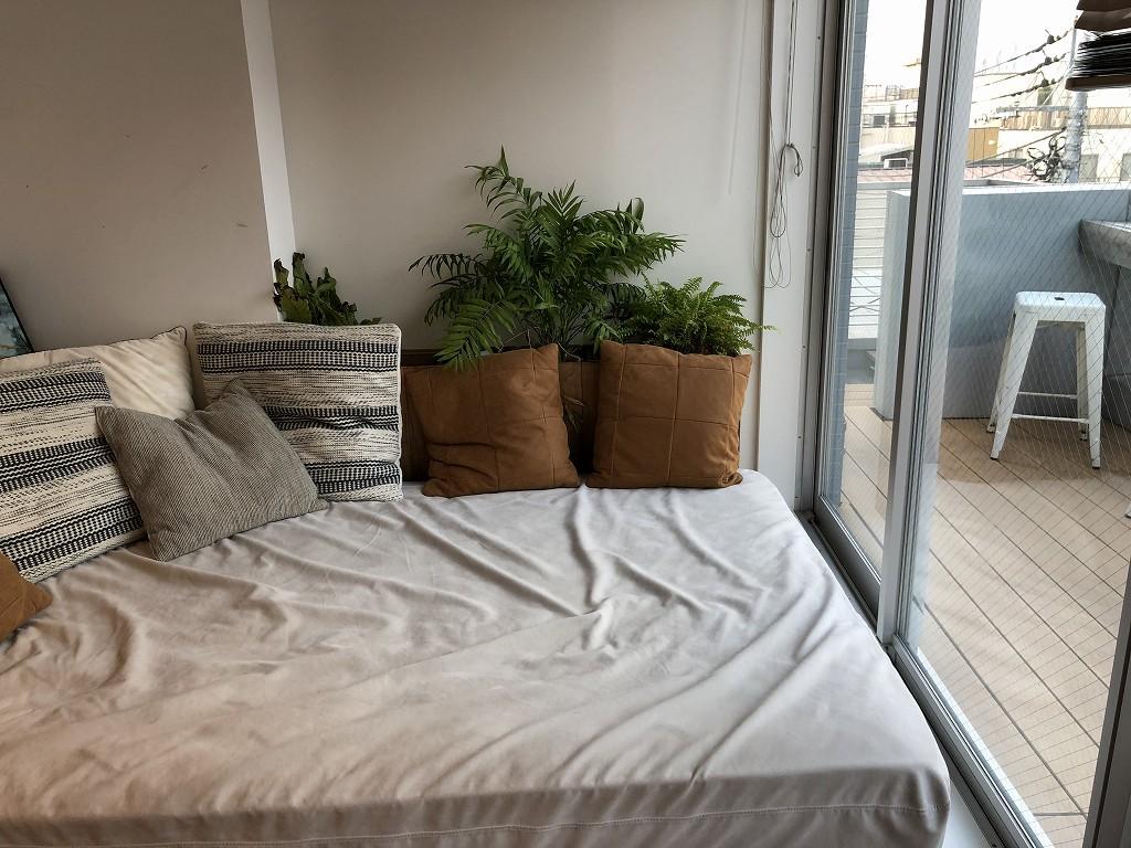 illi Shimokitazawaの301号室の植物2