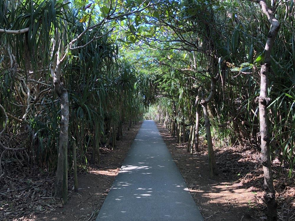 下地島の通り池1