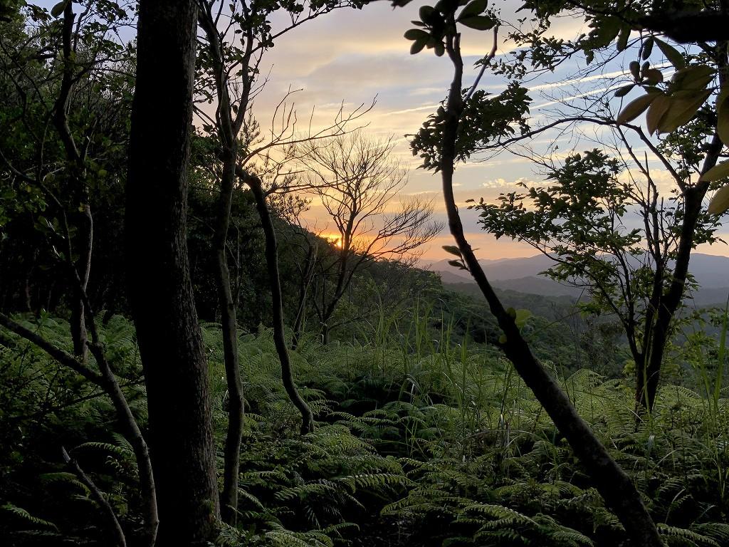 横山展望台から夕日