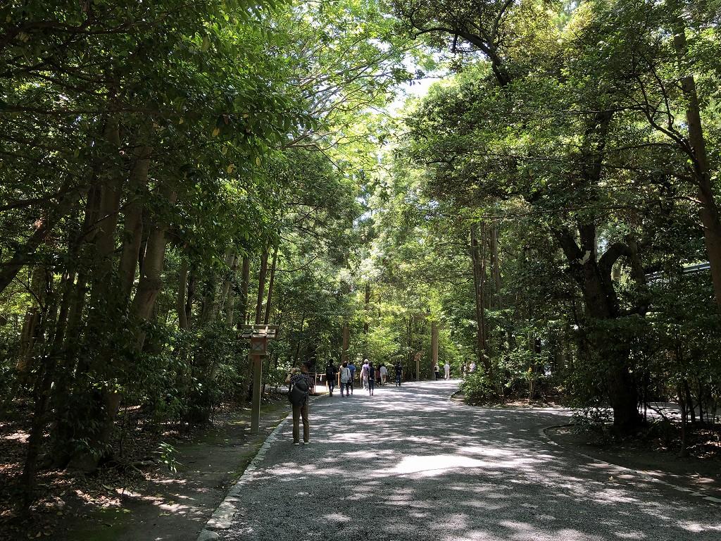 伊勢神宮の外宮の木もれ陽の参道2