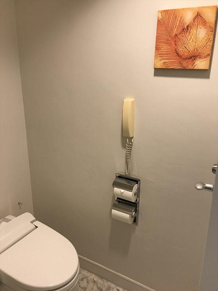 ANAインターコンチネンタル石垣リゾートのタワーウィング デラックスルーム(トイレ)