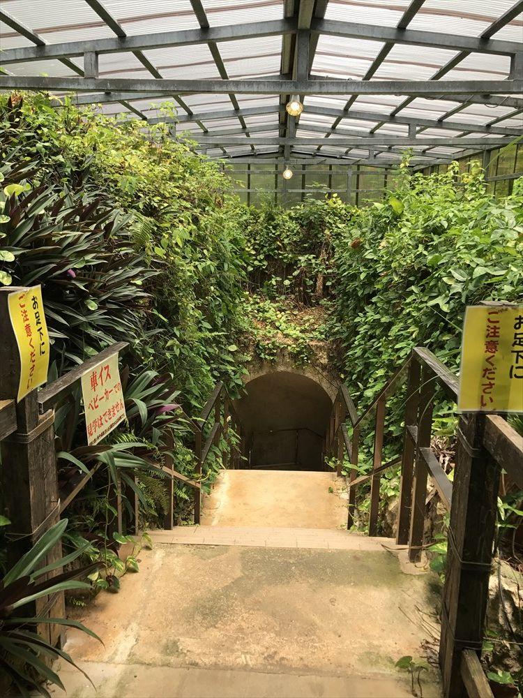 石垣島鍾乳洞の地下への入口