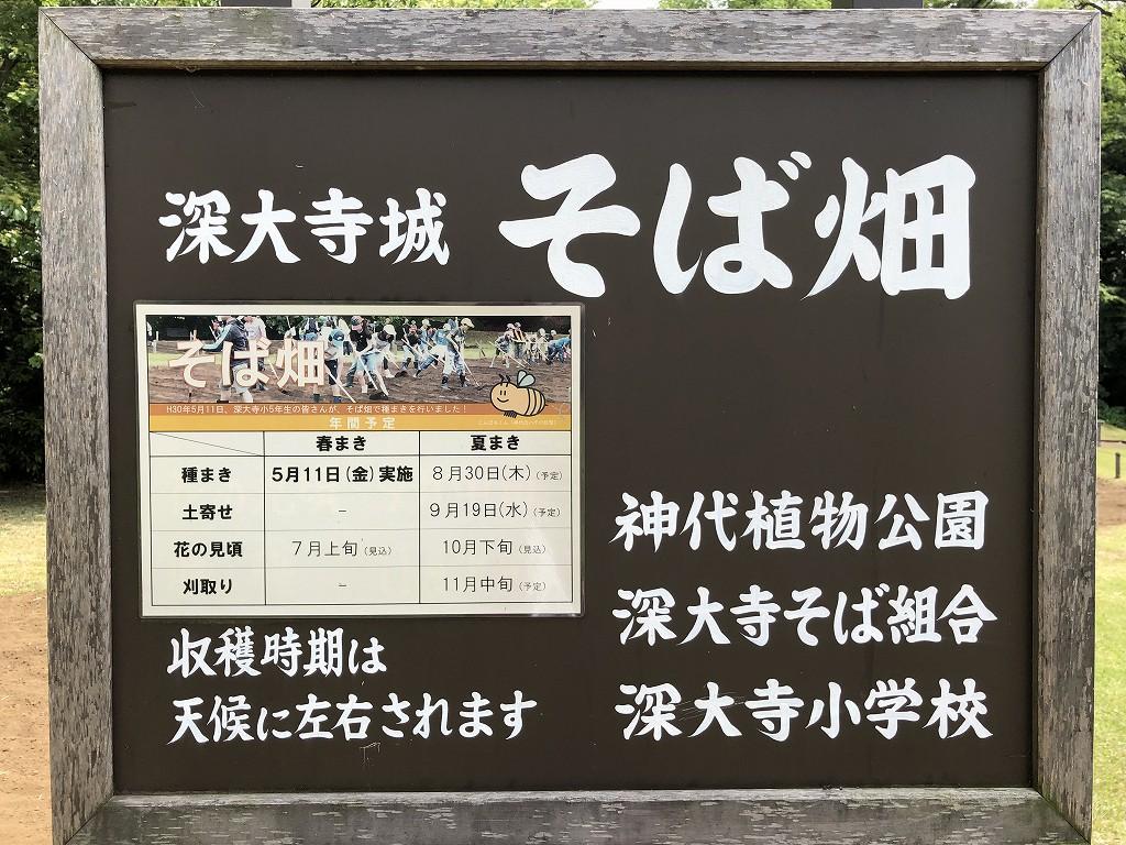 深大寺のそば畑2