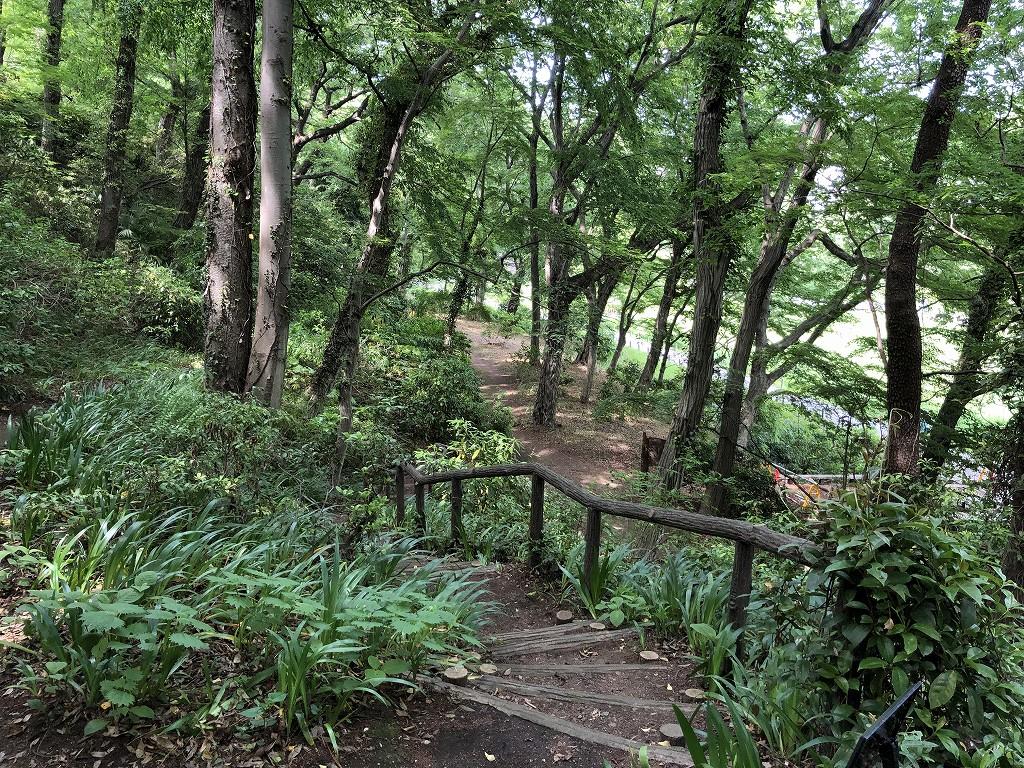 深大寺城跡から水生植物園へ1