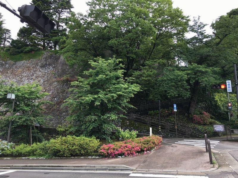 犀川河畔の寺町台の崖