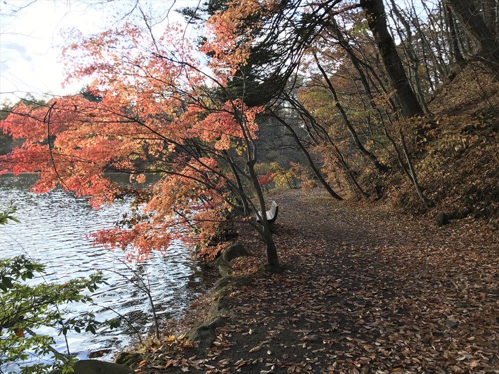 塩沢湖の湖畔の道