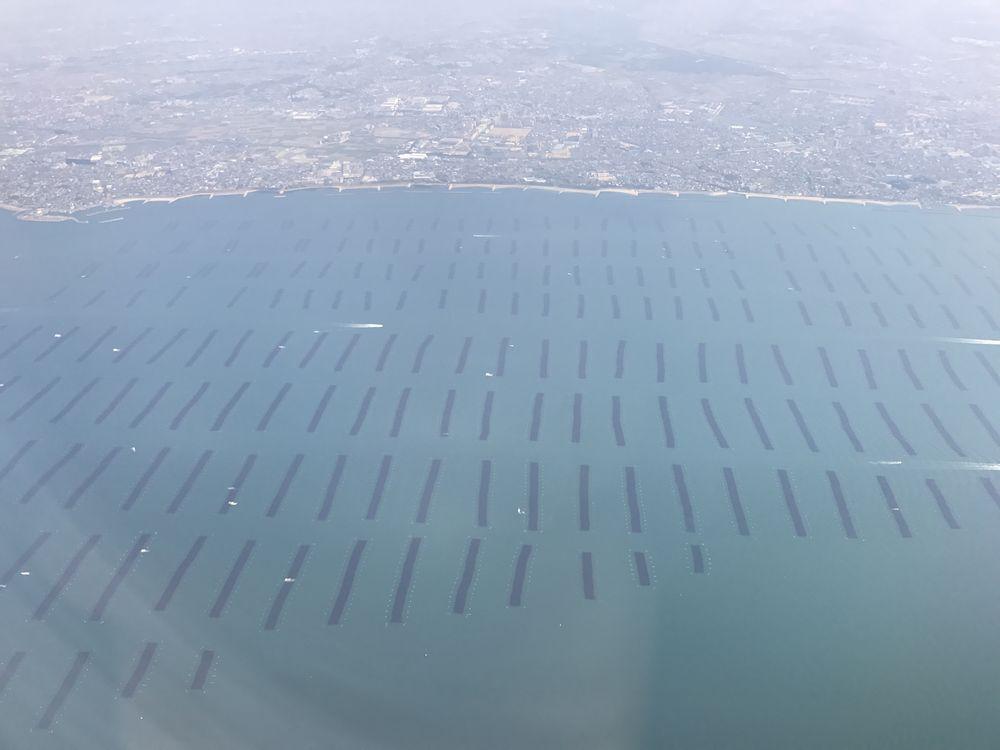 明石市沖では養殖の海苔網