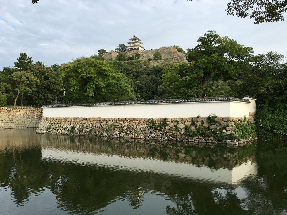 丸亀城(近景)1