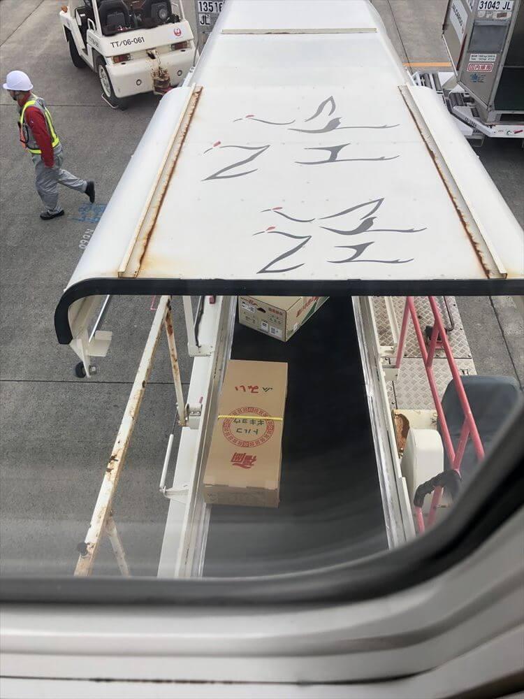 JAL543便で空輸された花
