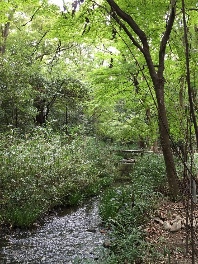 下鴨神社の奈良殿神地にある橋1