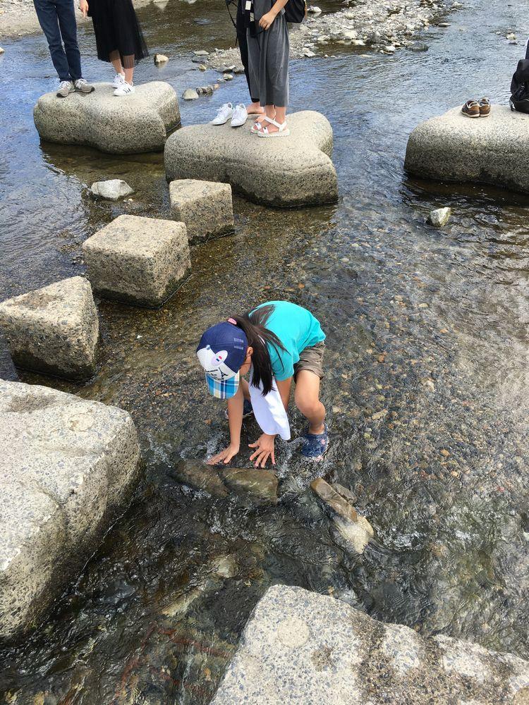 鴨川デルタでの水遊び