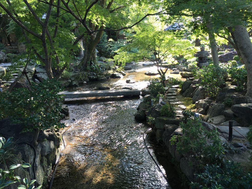 がんこ高瀬川二条苑の庭