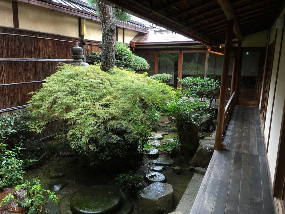 雨に濡れた正庵の中庭