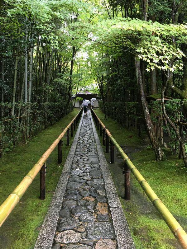 京都の大徳寺の高桐院の参道
