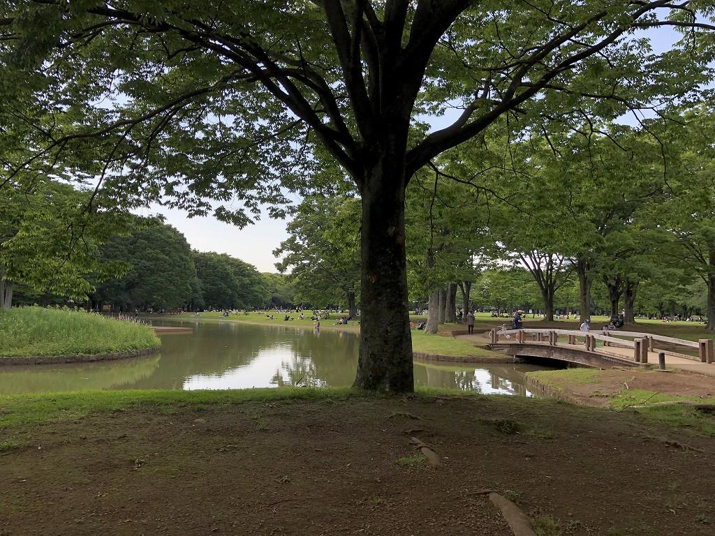 代々木公園内をサイクリング2
