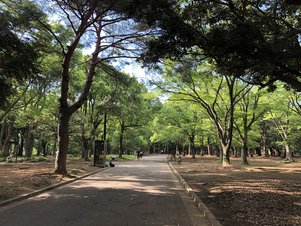 代々木公園内をサイクリング3