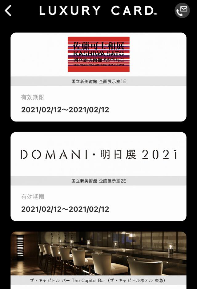 ラグジュアリーカードの美術館優待チケット1