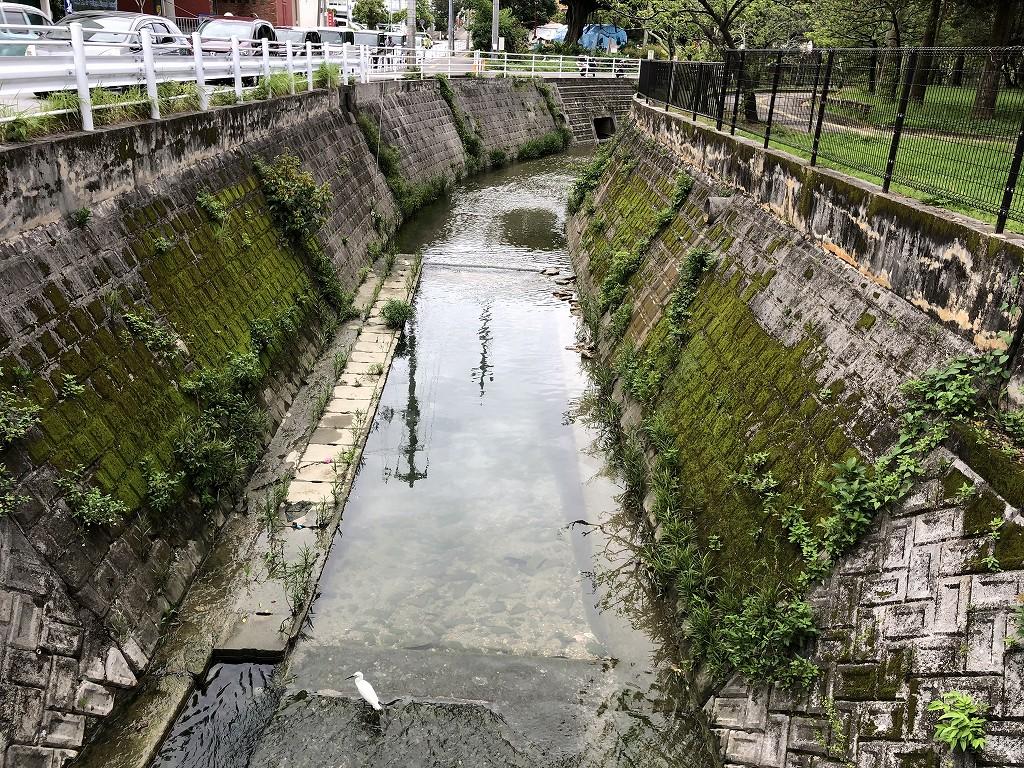 与儀公園のガーブ川