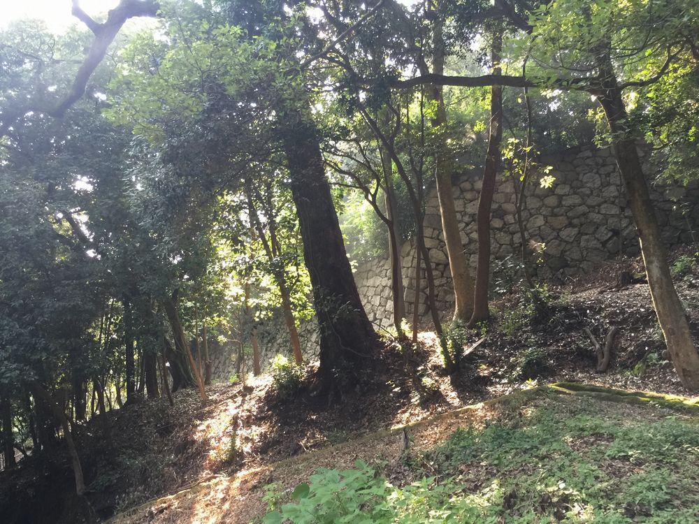 松山城の登り石垣2