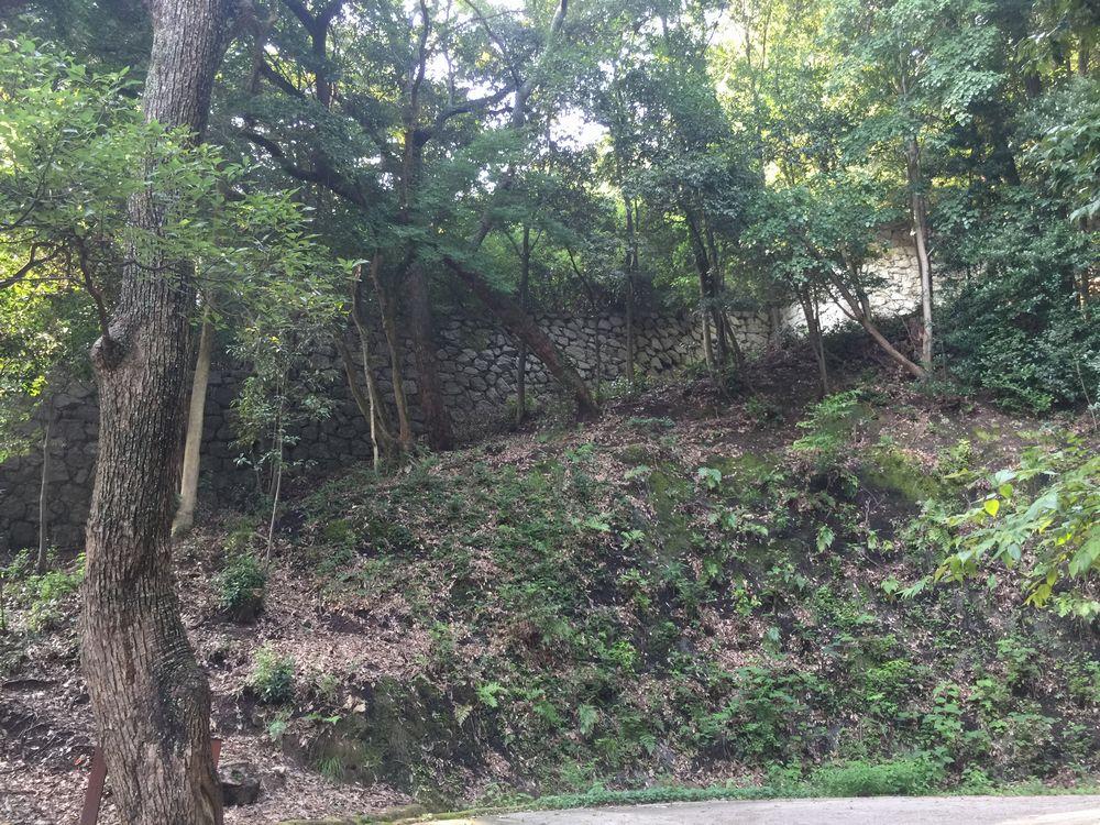 松山城の登り石垣3