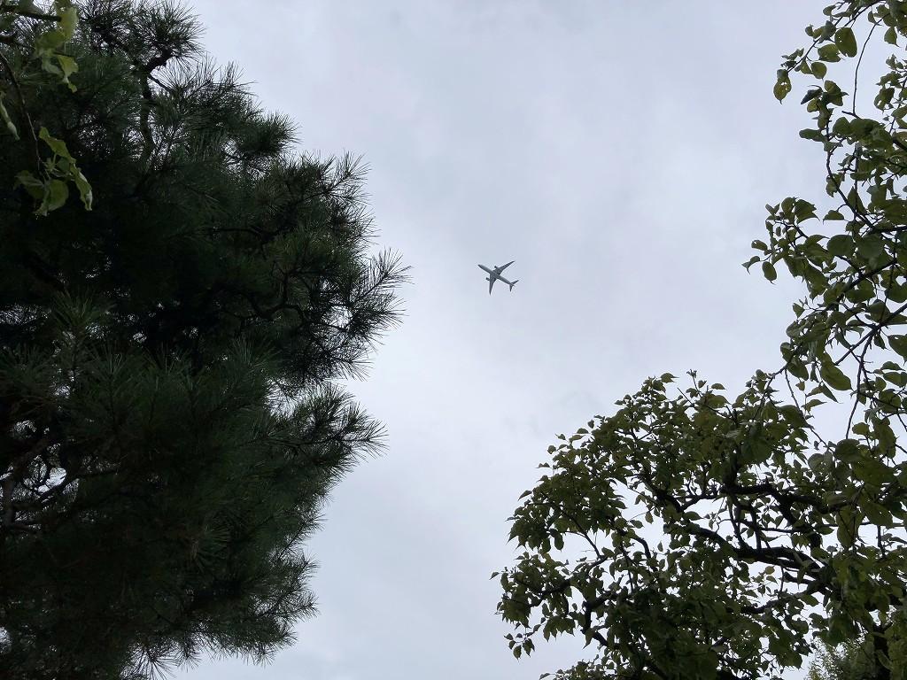 鳩森八幡神社の上の飛行機