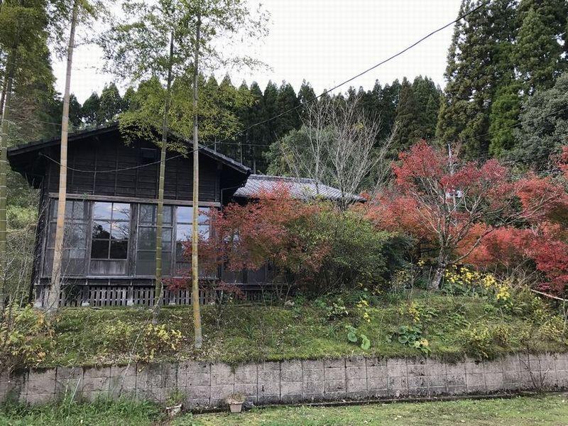 地鶏庵城の平の外観1