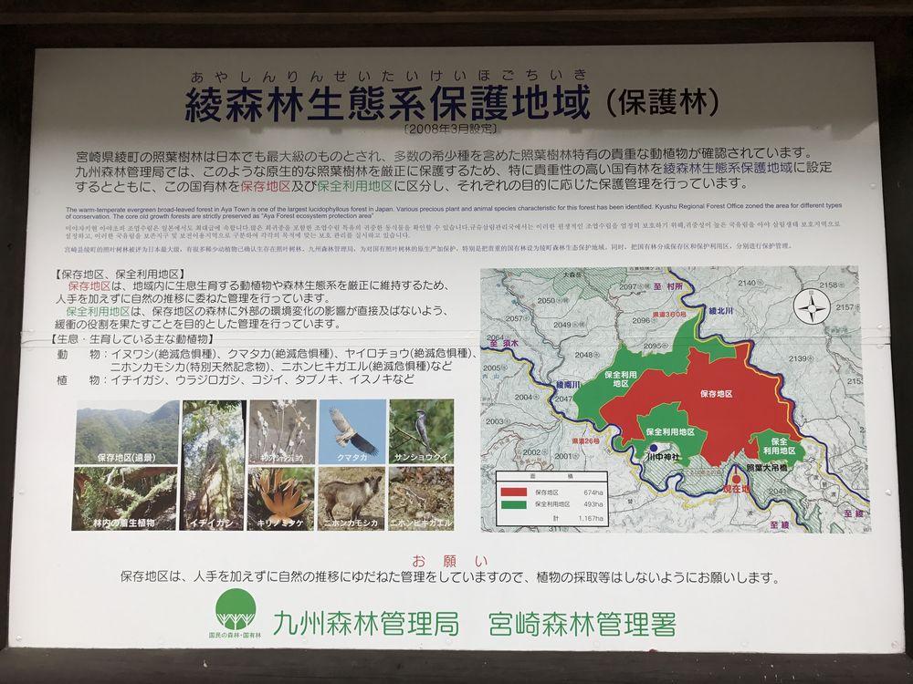 綾地区の照葉樹林の説明2