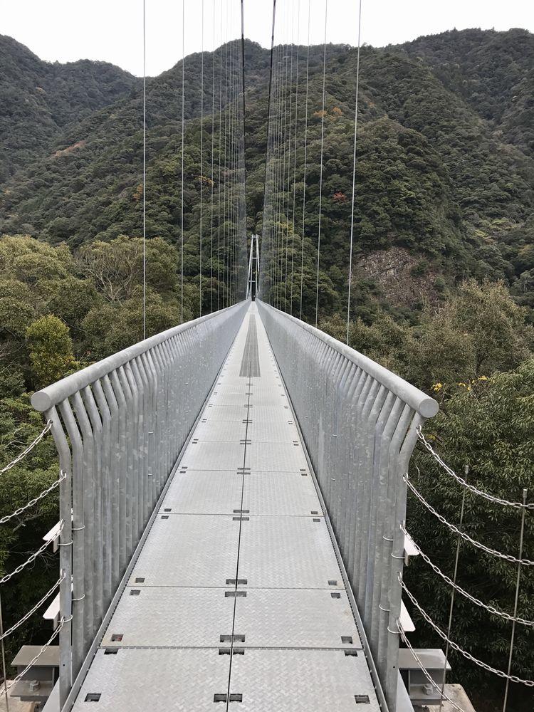 照葉大吊橋3