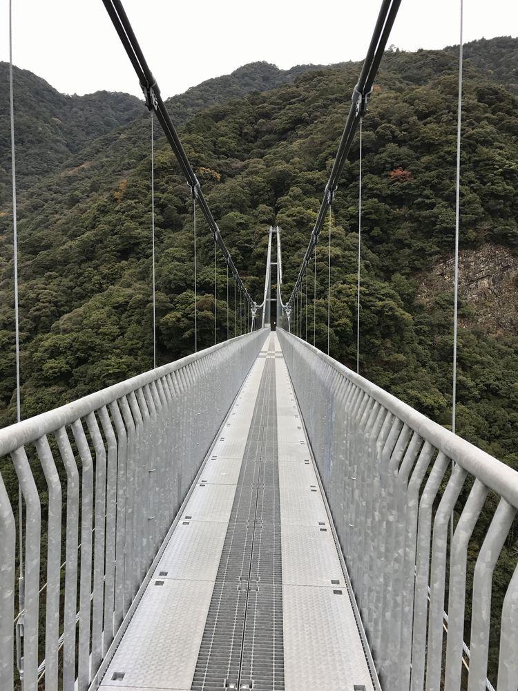 照葉大吊橋7