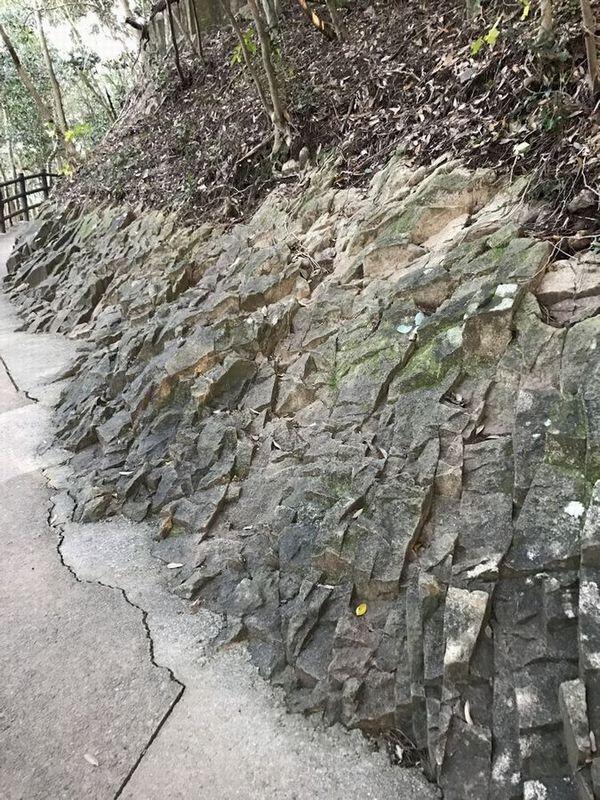 馬ヶ背遊歩道の柱状節理1